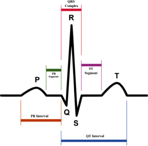 Rhythm Recognition - ACLS Medical Training