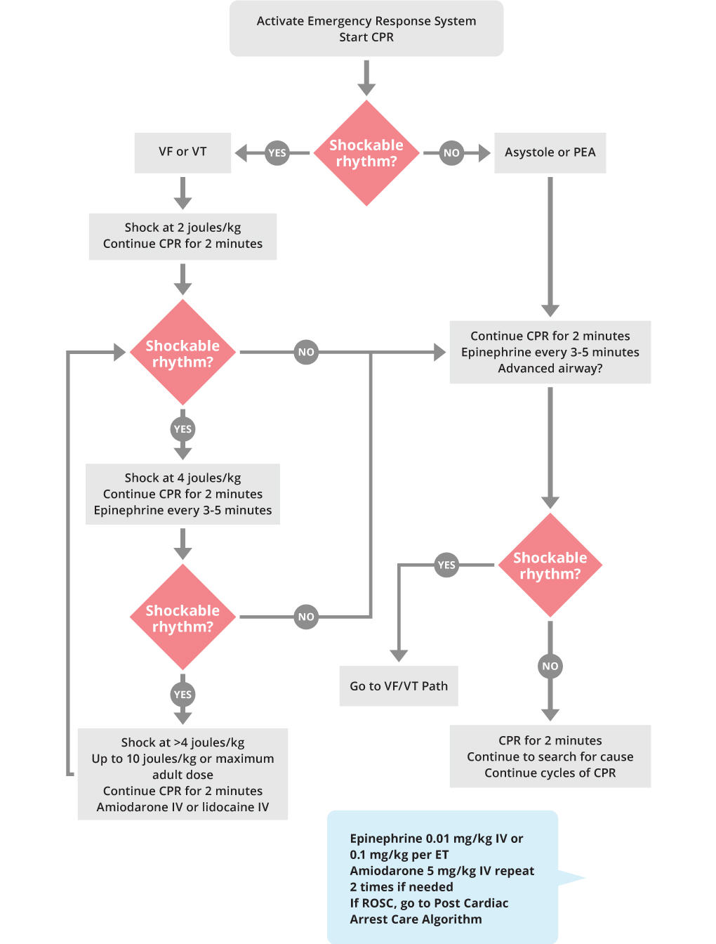 PALS Cardiac Arrest Algorithm