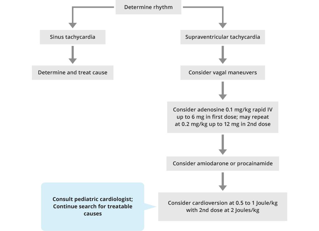 PALS Narrow QRS Tachycardia Adequate Perfusion Algorithm