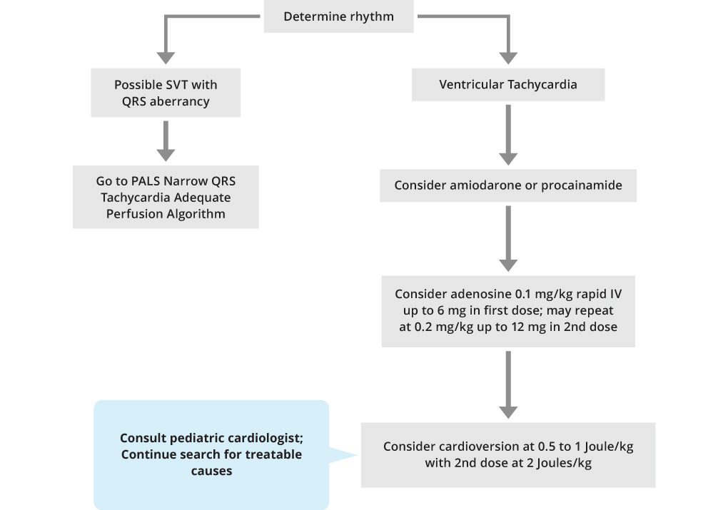 PALS Wide QRS Tachycardia Adequate Perfusion Algorithm