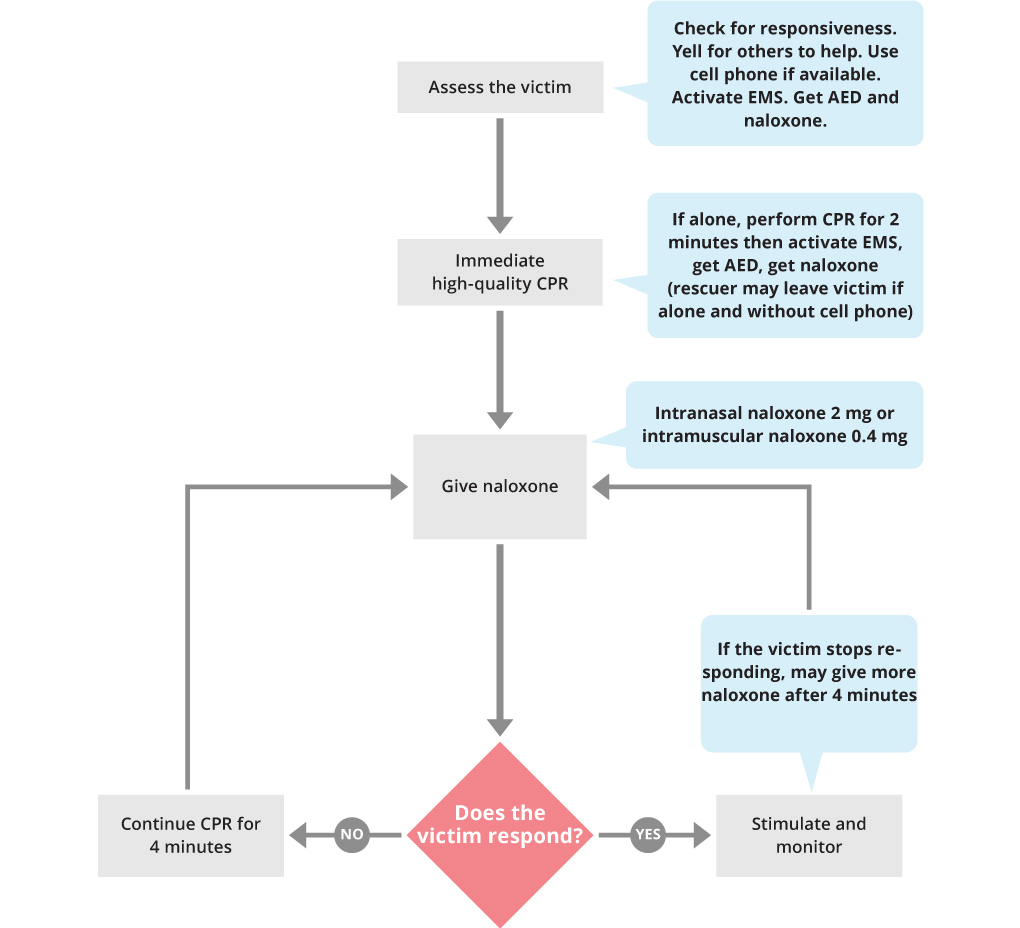 Bls Suspected Opioid Overdose Algorithm Acls Medical Training