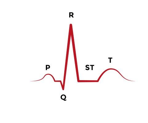 The Basics of ECG - ACLS Medical TrainingACLS Medical Training